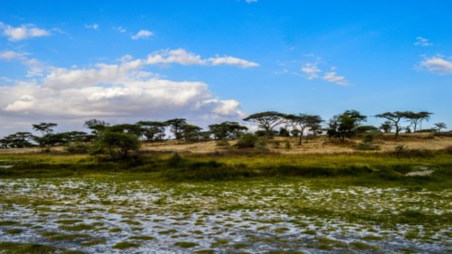 Tanzania-194